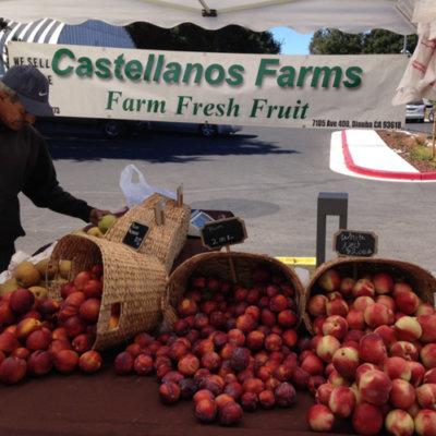 castellanos farms