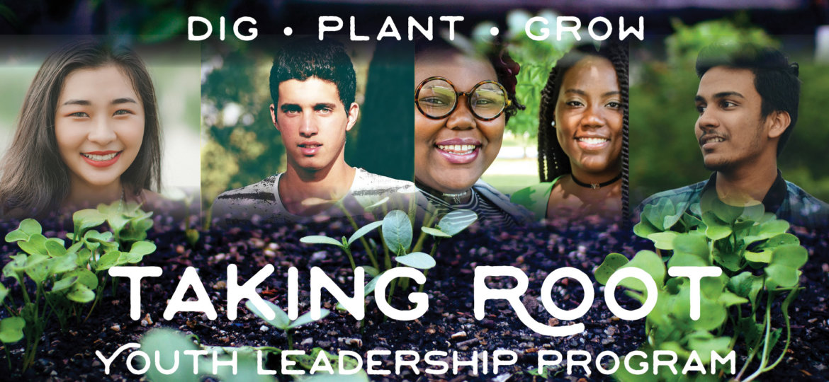 taking root youth leadership